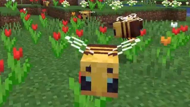 Minecraft Bienen Update